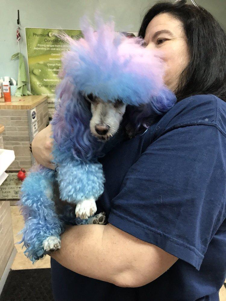Niles Pet Salon: 334 S Main St, Niles, OH