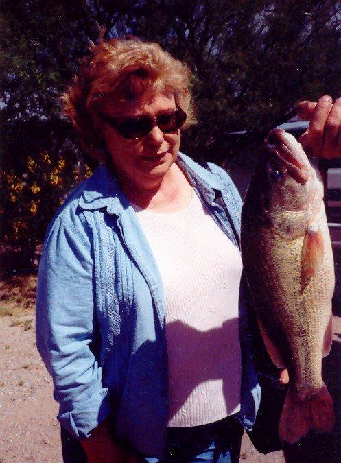 Caballo Lake RV Park: 14279 Nm-187, Caballo, NM