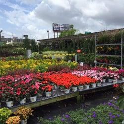 perino s garden center 97 photos 25 reviews nurseries gardening 3100 veterans memorial