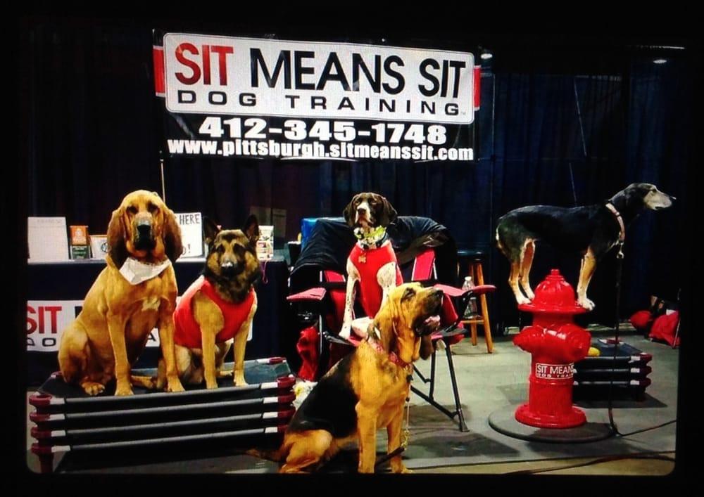 Sit Means Sit: 3910 Saw Mill Run Blvd, Pittsburgh, PA