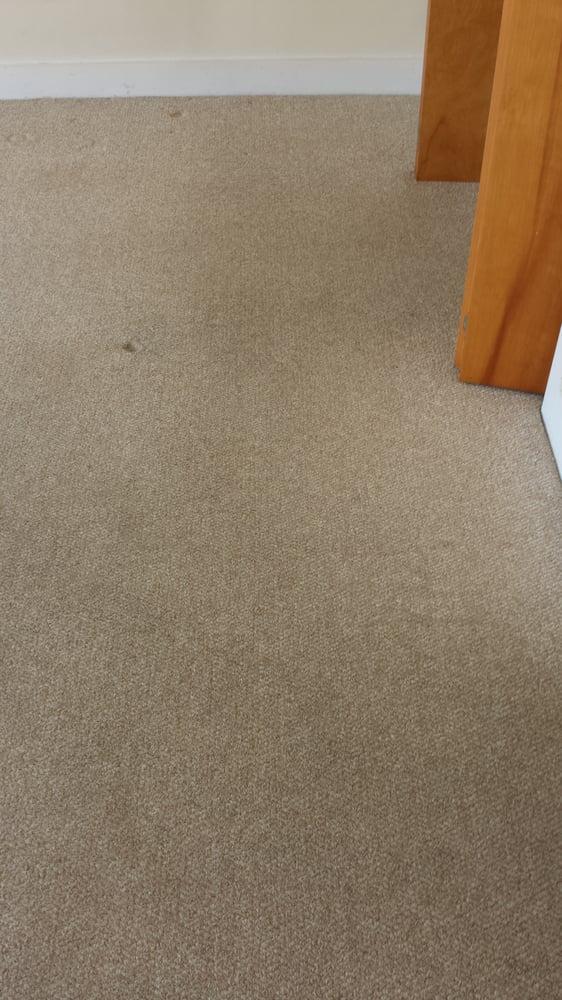 Heaven's Best Carpet Cleaning Lewisburg: 104 Old Rte 45, Milton, PA