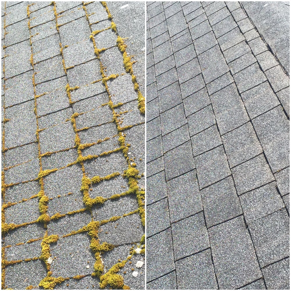 Moss Removal Before And After Yelp