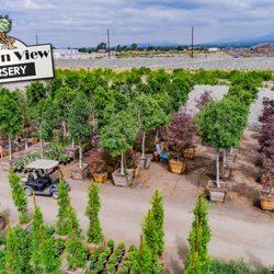 Photo Of Garden View Nursery Irwindale Ca United States 1000 S Trees