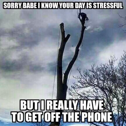 Treeces Trees: 8634 E 700th N, Lafayette, IN