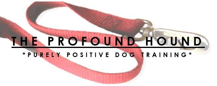 The Profound Hound: Edmond, OK