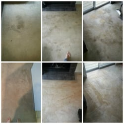 Alexandria Va Carpet Cleaning