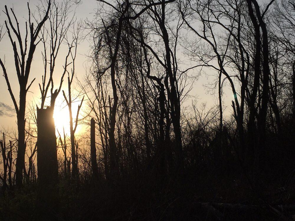 Withrow Nature Preserve: 7075 Five Mile Rd, Cincinnati, OH