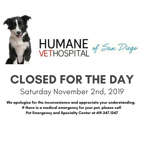 Humane Vet Hospital of San Diego
