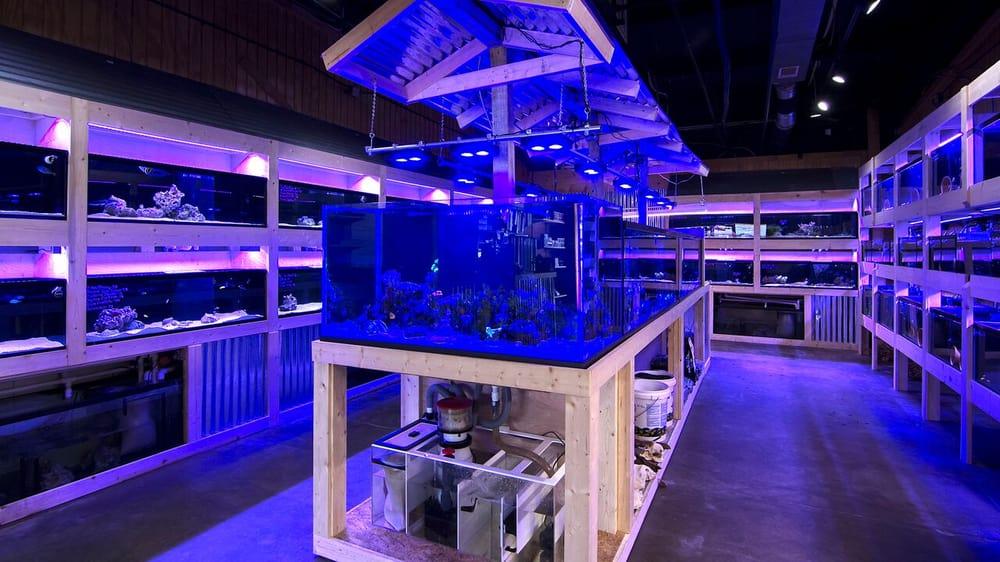 The Fish Tank: 400 N Bowman Rd, Little Rock, AR