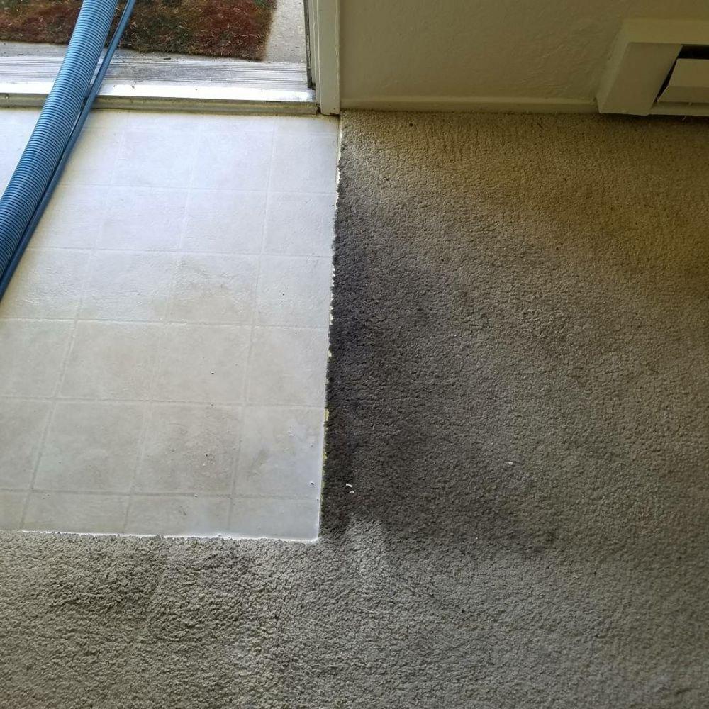 Photo of c j carpet cleaning san jose ca united states