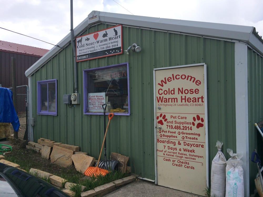 Cold Nose Warm Heart: 728 Front St, Leadville, CO