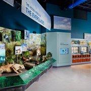 South Florida Science Center And Aquarium 146 Fotos E 59