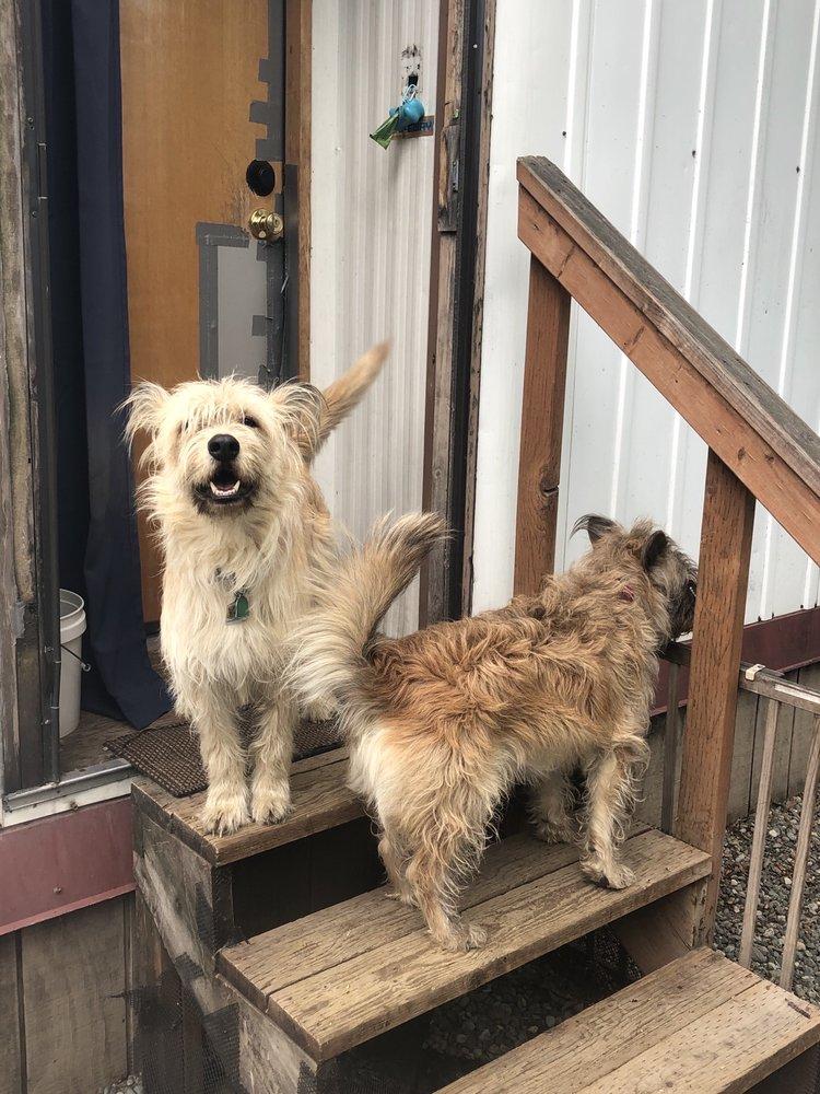 Happy Hearts Pet Care AK: Anchorage, AK