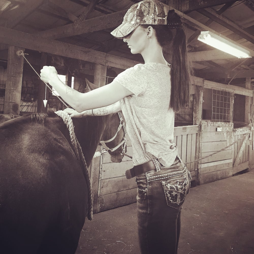 Highlands Ranch Locksmith: Lauren Manchego Working On Horse And Checking His Chakras