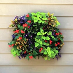 Photo Of Window Gardens Direct   Tyrone, PA, United States. Purchase Square  Wall