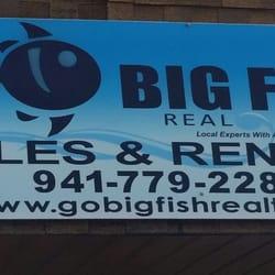Big fish real estate servizi immobiliari 5351 gulf dr for Fish real estate