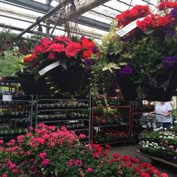 Photos For Merrifield Garden Center Yelp