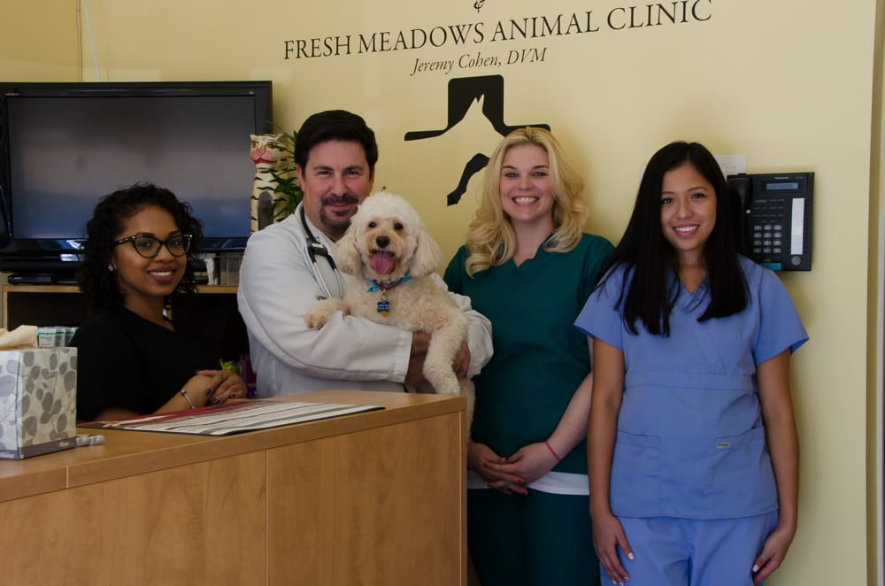 Fresh Meadows Animal Clinic 42 Photos Amp 104 Reviews
