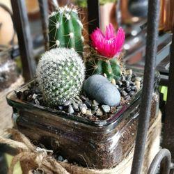 Lotus Flower Boutique 113 Photos Florists 4132 Dawson Street