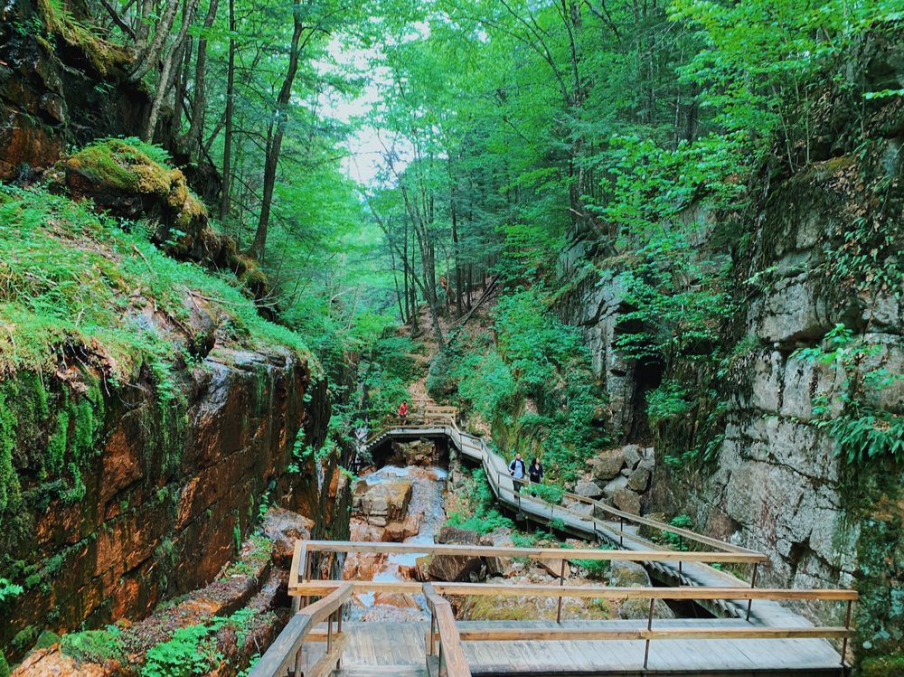 The Flume Gorge: 852 Daniel Webster Hwy, Lincoln, NH