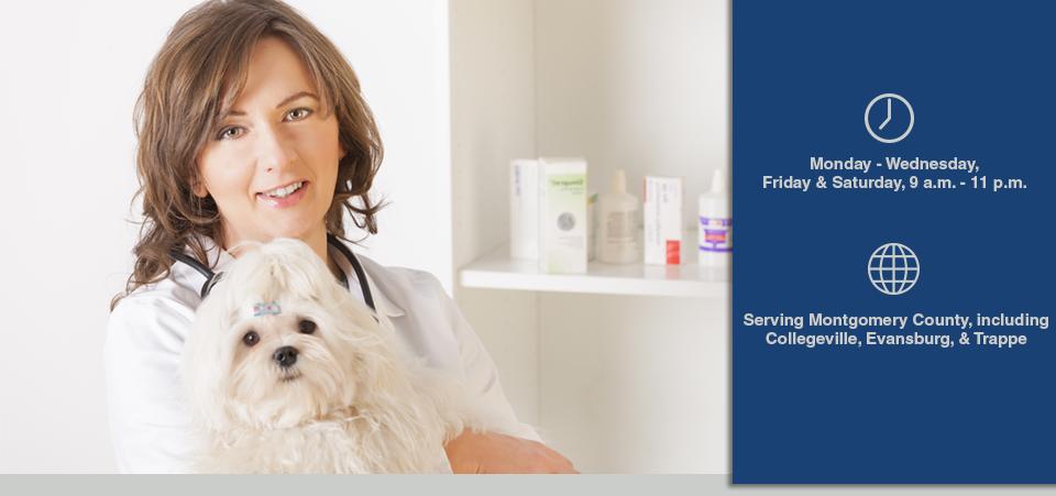 Perkiomen Valley Veterinary Clinic: 24 W Main St, Collegeville, PA