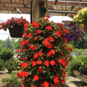 berns garden center landscaping nurseries gardening 875 greentree rd middletown oh