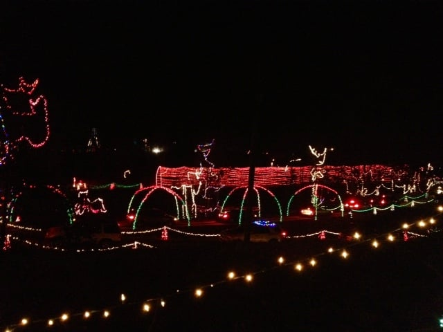 Photo of Zootastic Park - Troutman, NC, United States. Zoostastic Christmas  lights - Zoostastic Christmas Lights - Yelp