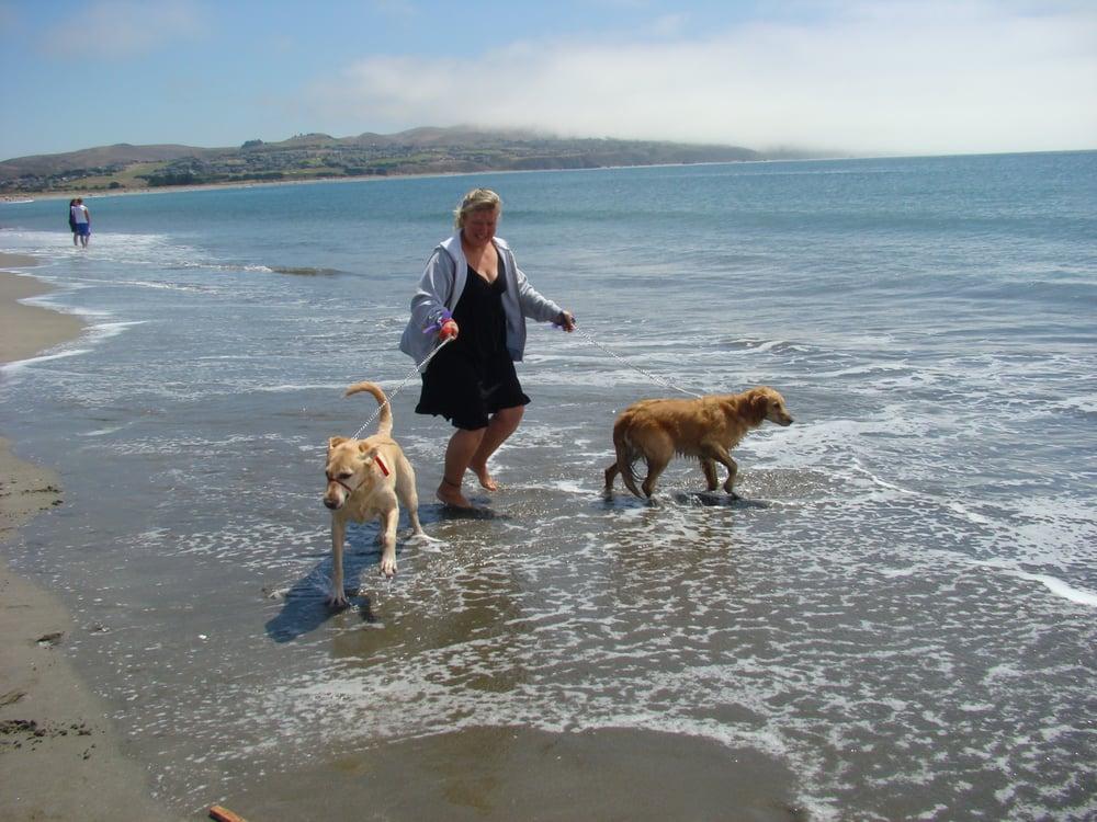 Monica's Pet Sitting: 544 Poppy Cir, Benicia, CA