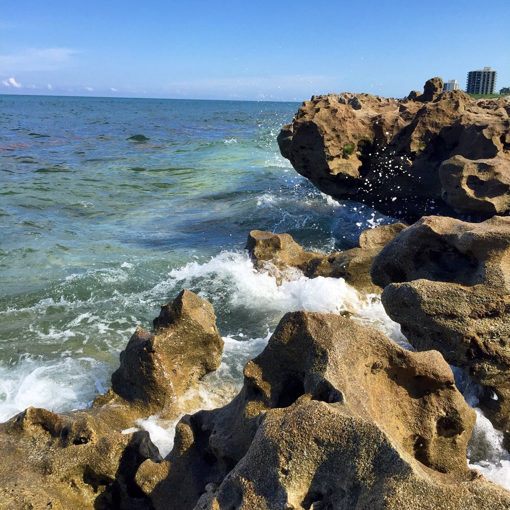 Photos for blowing rocks preserve yelp for Lady stuart deep sea fishing