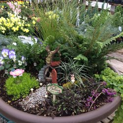 Photo Of Valley View Nursery   Ashland, OR, United States. New Fairy Garden  ...