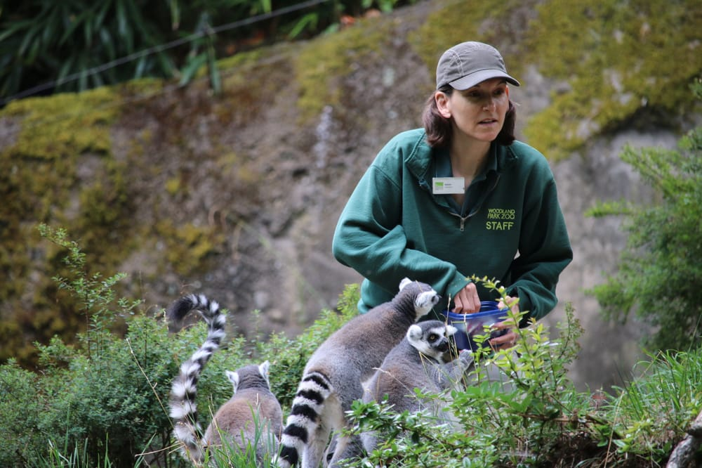Woodland Park Zoo: 5500 Phinney Ave N, Seattle, WA