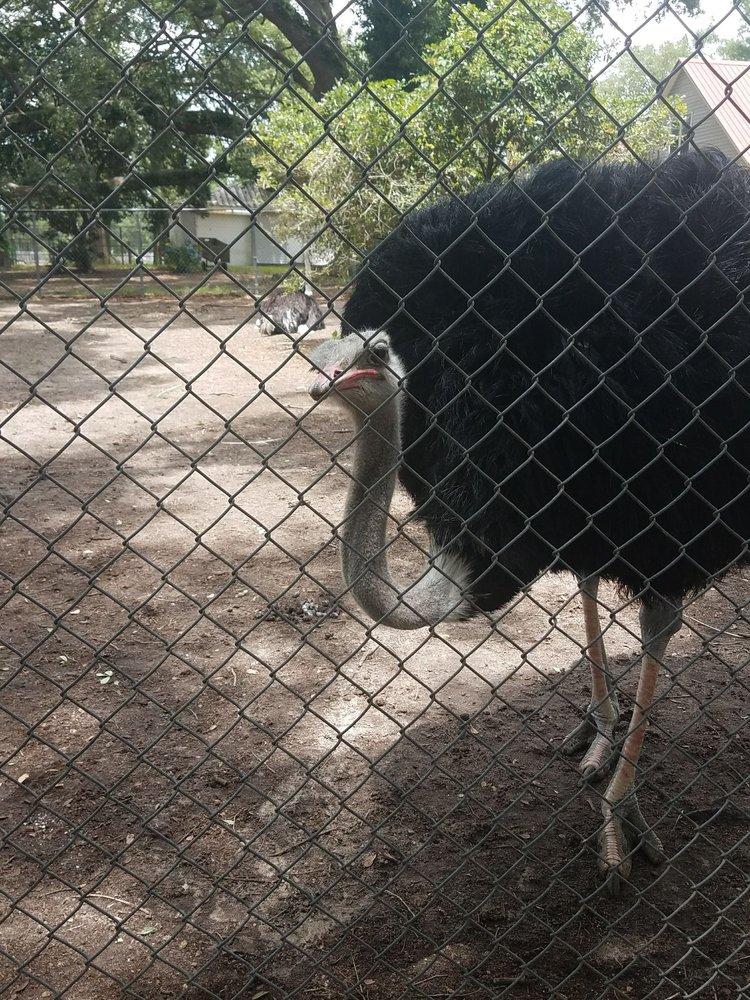 Waccatee Zoological Farm Myrtle Beach Sc