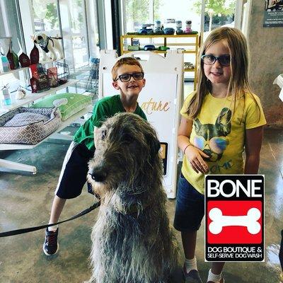 Bone Dog Boutique Self Serve Dog Wash 100 Ne 2nd St Oklahoma City