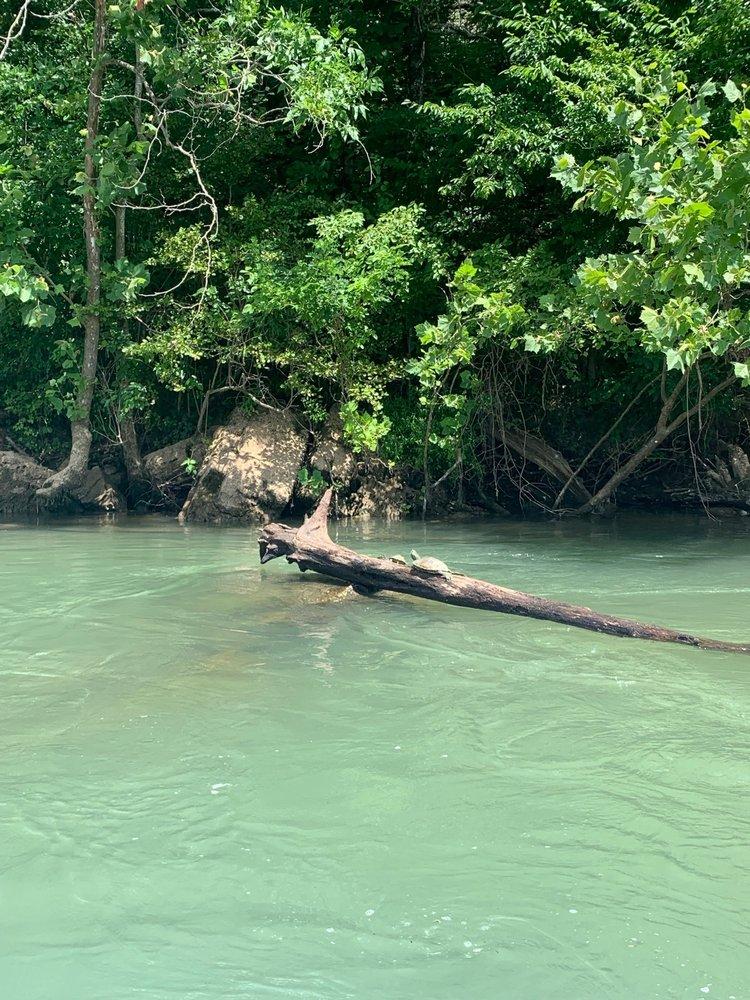 Ozark National Scenic Riverways: 404 Watercress Dr, Van Buren, MO