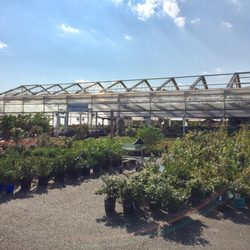 Photo Of Merrifield Garden Center   Gainesville, VA, United States.