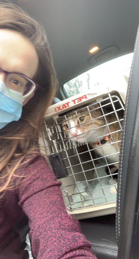 Creekwood Animal Hospital: 3818 Pontoon Rd, Pontoon Beach, IL