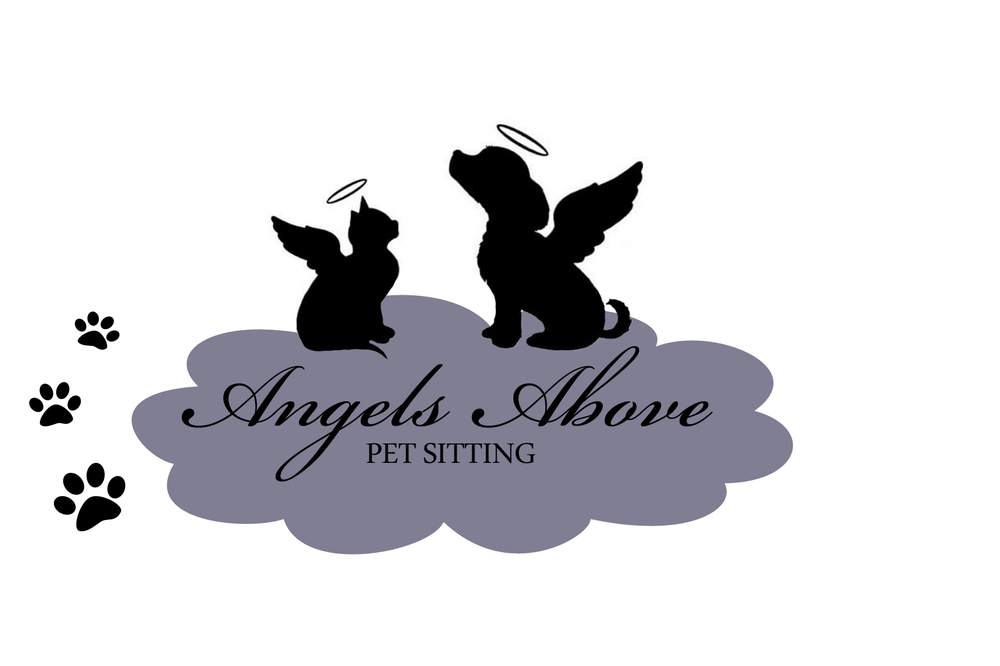 Angels Above Pet Sitting Pet Sitting 9317 Edmund St Torresdale