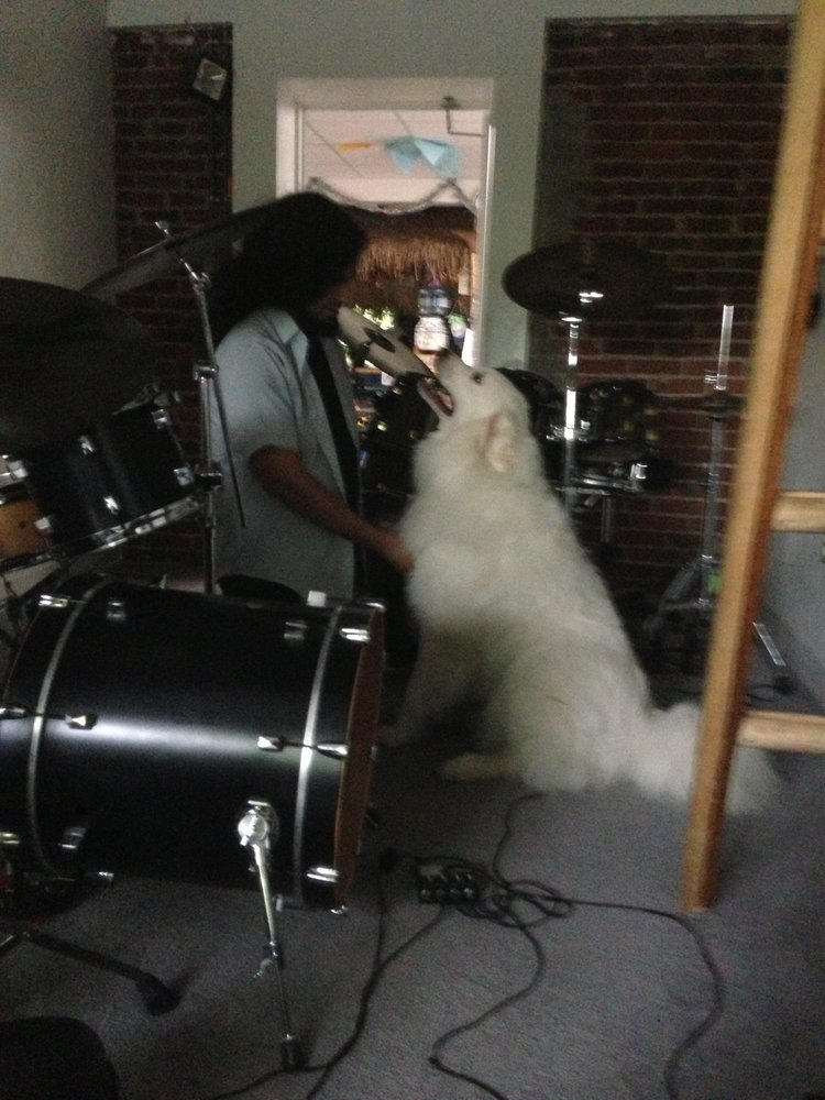 California Drum Shop: 343 Rauch St, Bethlehem, PA