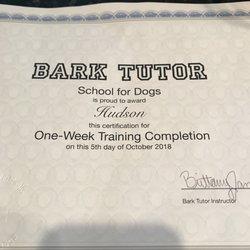 Bark tutor