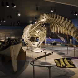 Photo Of New Bedford Whaling Museum Ma United States