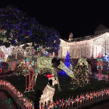Christmas Tree Lane - 357 Photos & 52 Reviews - Christmas Trees ...