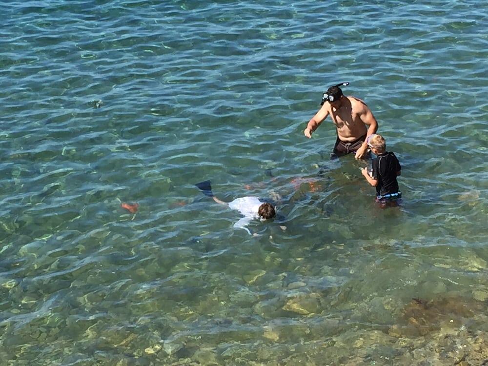 Catalina Snorkel Shack: 103 Pebbly Beach Rd, Avalon, CA