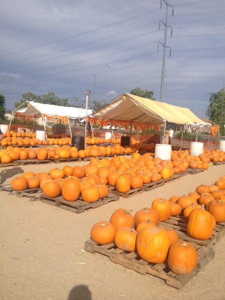 Saint James Pumpkin Patch