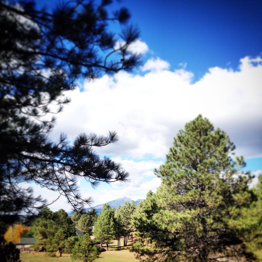 Arizona Mountain Inn Amp Cabins 42 Photos Amp 38 Reviews