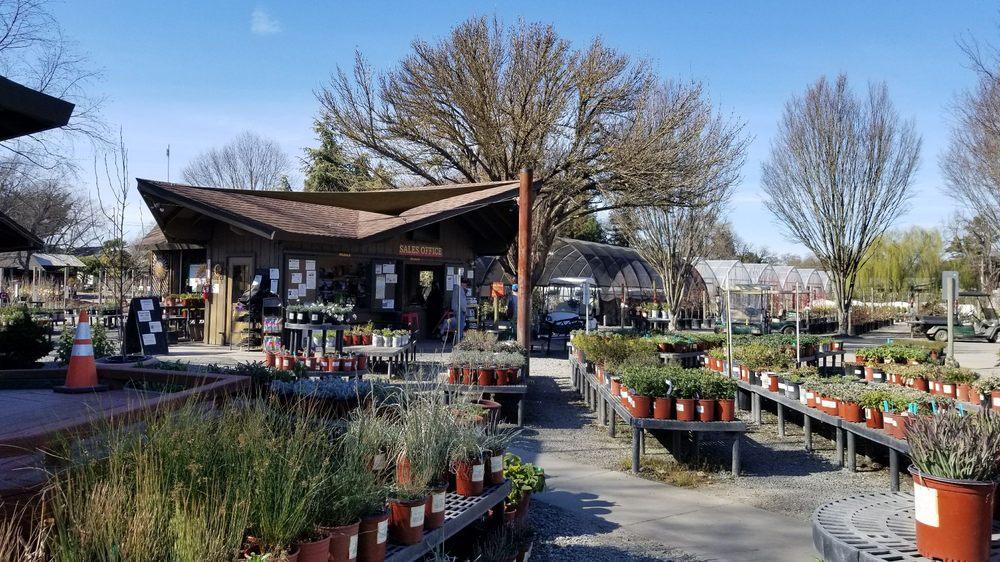 Urban Tree Farm Nursery: 3010 Fulton Rd, Fulton, CA