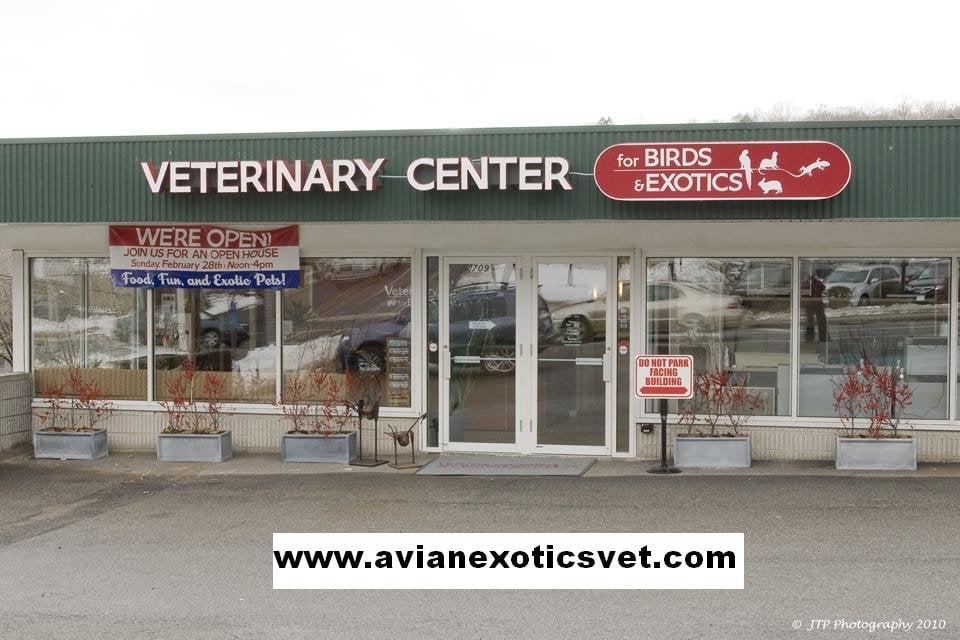 Veterinary Center for Birds & Exotics: 709 Bedford Rd, Bedford Hills, NY