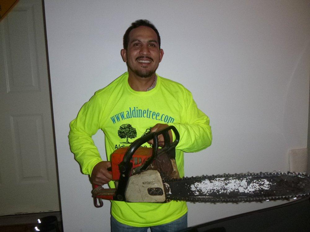 Aldine Tree Services Houston Stump Grinding: 1166 Woolwich Dr, Houston, TX
