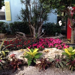 Charming Photo Of Delray Garden Center   Delray Beach, FL, United States. Bromeliads