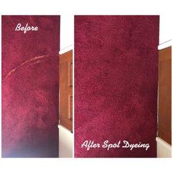The Rug Colorist Florida Carpet Dyeing Interbay Tampa Fl