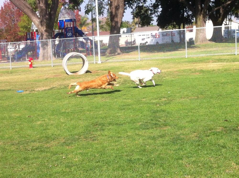 Central Bark Dog Park West Covina